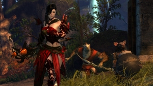 GW2HoT_02-2015_Escorting_Archer_and_Doorbreaker